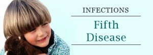 fifthdisease